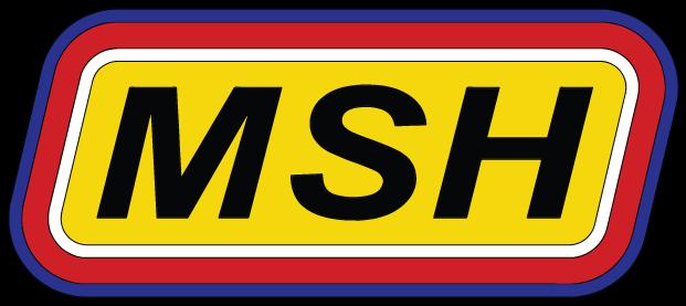Plastmodel MSH